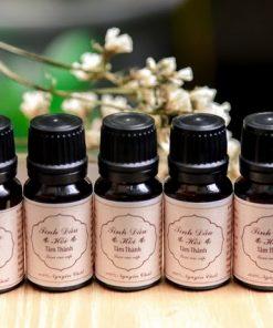 Tinh dầu hồi Lạng Sơn - Vị thuốc quý trong dân gian 6