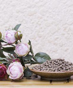 Viên nhàu khô nguyên chất từ trái nhàu già chín phơi khô 11