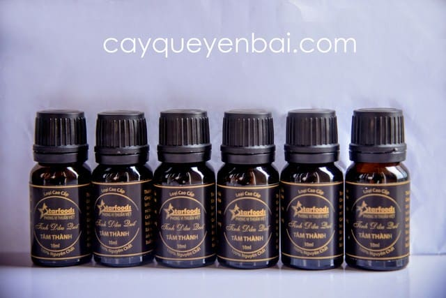 Truy tìm công dụng tinh dầu quế dưỡng tóc cực chuẩn 1