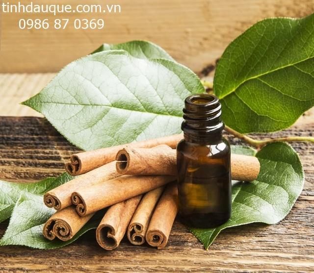 Lợi ích và cách dùng tinh dầu lá quế 2